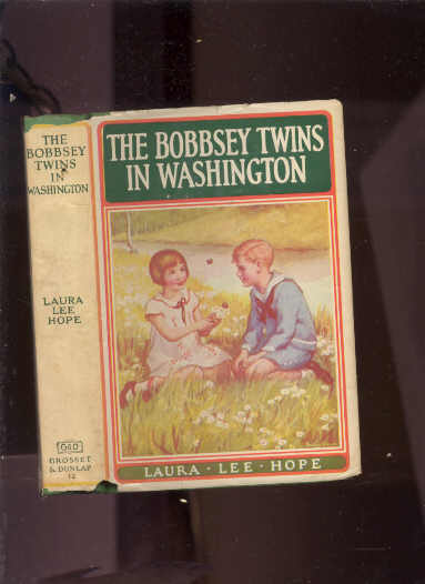Image for BOBBSEY TWINS AT SCHOOL