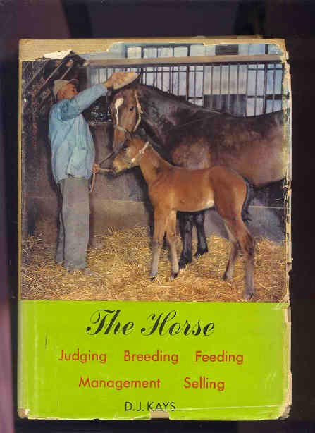 Image for THE HORSE : JUDGING, BREEDING, FEEDING, MANAGEMENT, SELLING