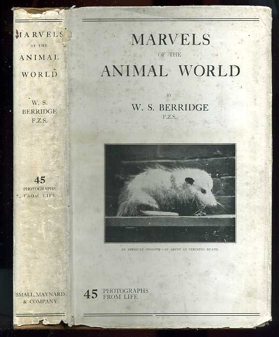 Image for MARVELS OF THE ANIMAL WORLD 45 Photographs from Life