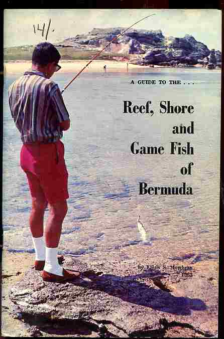 Image for A GUIDE TO THE REEF, SHORE AND GAME FISH OF BERMUDA