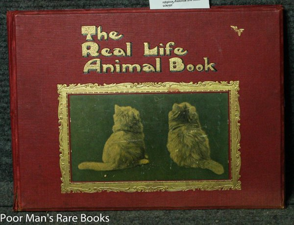 Image for THE REAL LIFE ANIMAL BOOK [Lbc]