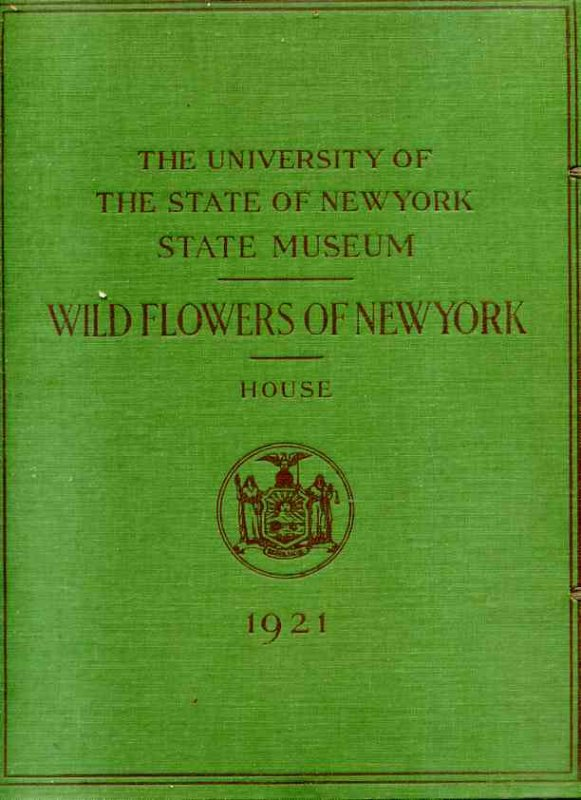 Image for WILDFLOWERS IN NEW YORK From Memoir 15 Play to through to Memoir 15 Play to 63