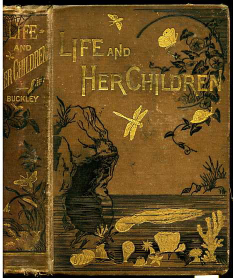 Image for LIFE AND HER CHILDREN GLIMPSES OF ANIMAL LIFE FROM THE AMOEBA TO THE INSECTS  (With Upwards of One Hundred Illustrations)