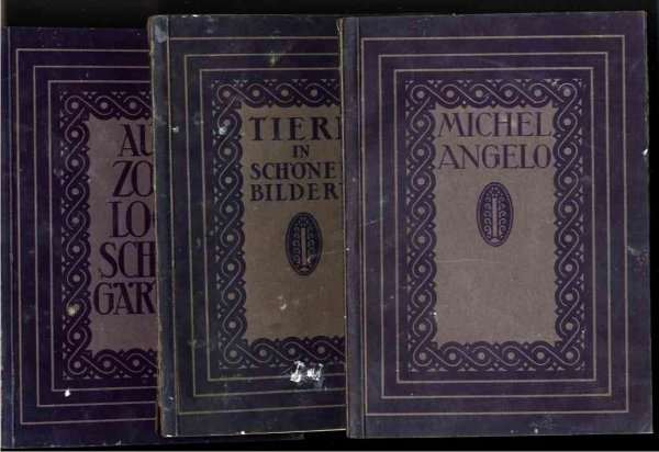 Image for MICHELANGELO, TIERE IN SCHONENE BILDERN; AUS ZOO LOGI SCHEN GARTEN 3 Vols of Photos