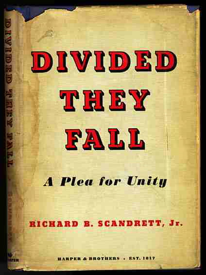 Image for DIVIDED THEY FALL