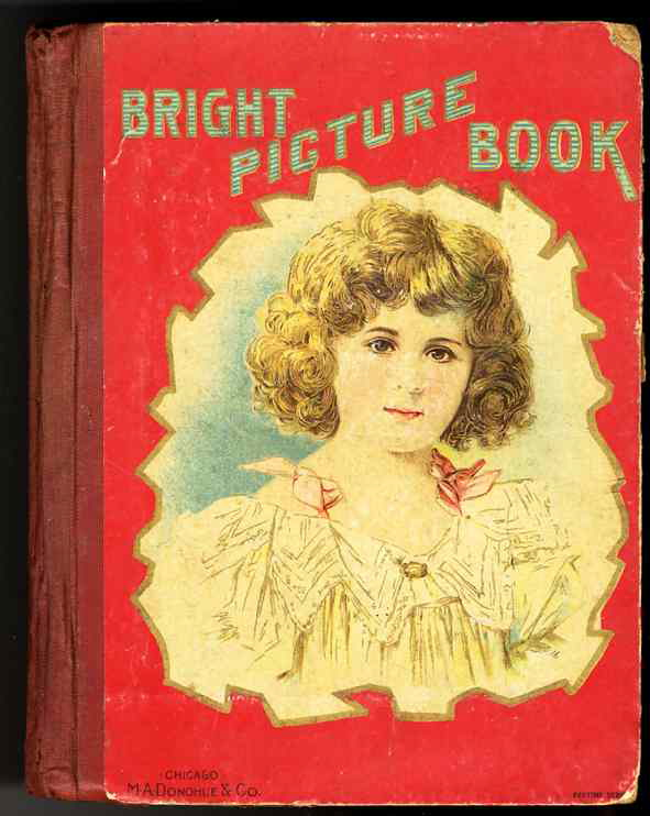 Image for BRIGHT PICTURE BOOK