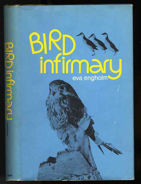 Image for BIRD INFIRMARY