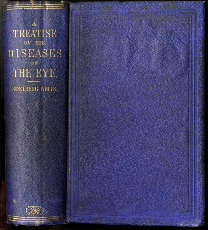 Image for A TREATISE ON THE DISEASES OF THE EYE.