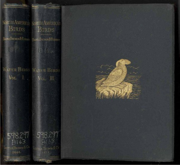 Image for WATER BIRDS OF NORTH AMERICA (COMPLETE IN 2 VOLS)