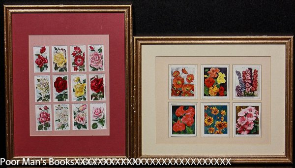 Image for WILL'S CIGARETTE CARDS FLOWERS 2 FRAMES