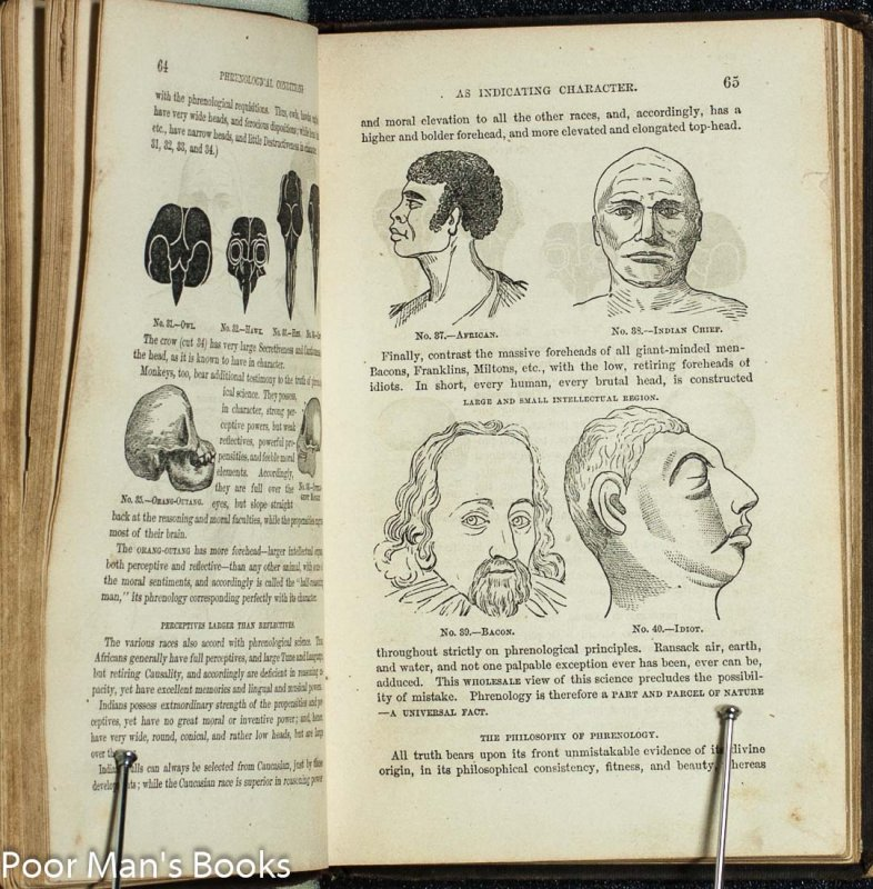 Image for New Illustrated Self Instructor in Phrenology and Physiology...