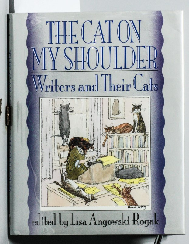 Image for THE CAT ON MY SHOULDER