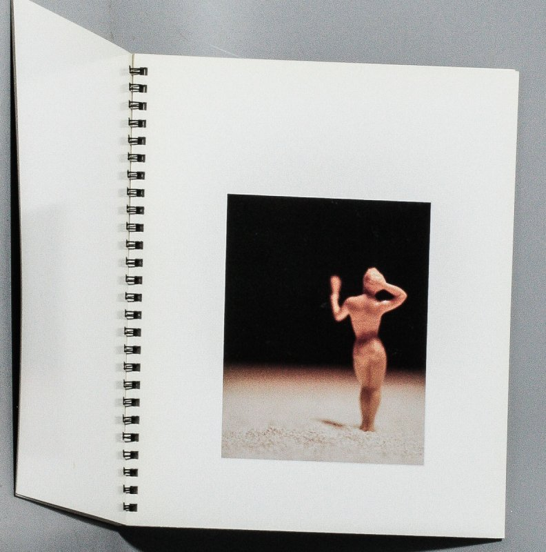 Image for DAVID LEVINTHAL: AMERICAN BEAUTIES [CATALOG]