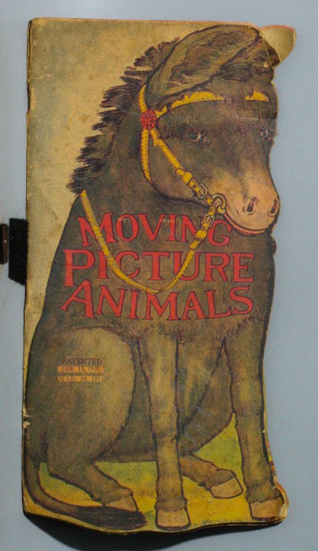 Image for MOVING PICTURE ANIMALS