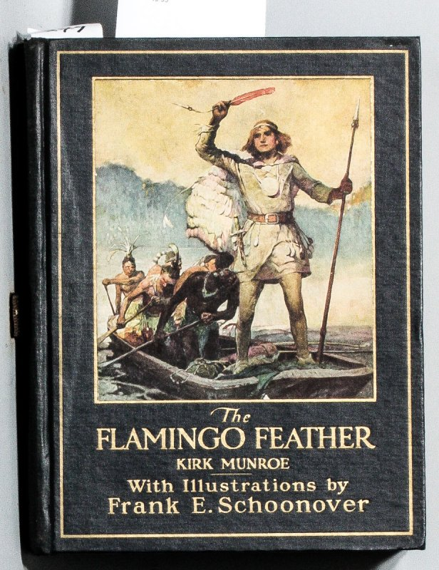 Image for THE FLAMINGO FEATHER