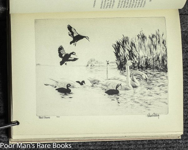 Image for BISHOP'S BIRDS. ETCHINGS OF WATER-FOWL AND UPLAND GAME BIRDS [SIGNED, author's copy]