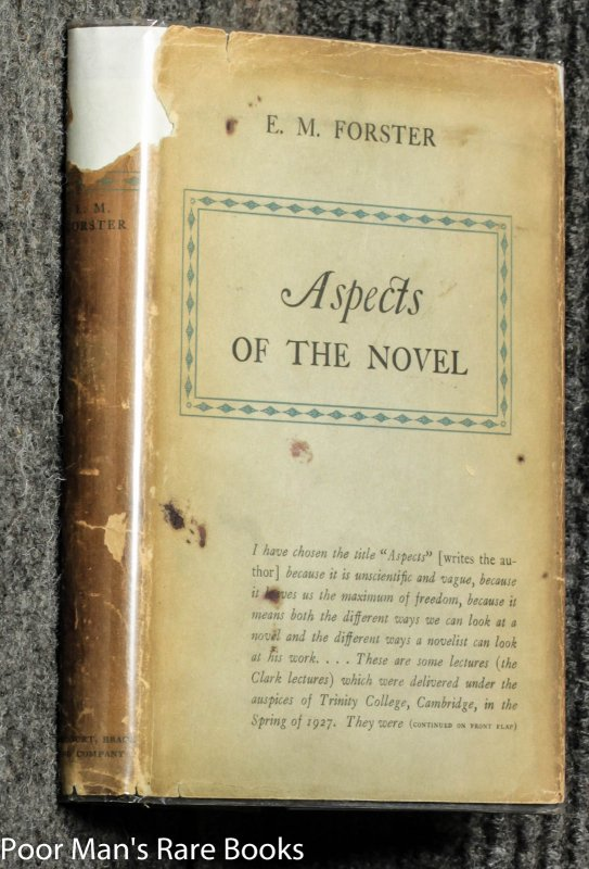 Image for Aspects Of The Novel