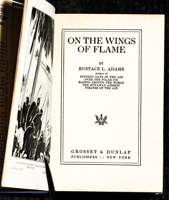 Image for On The Wings Of Flame 1st In Dj