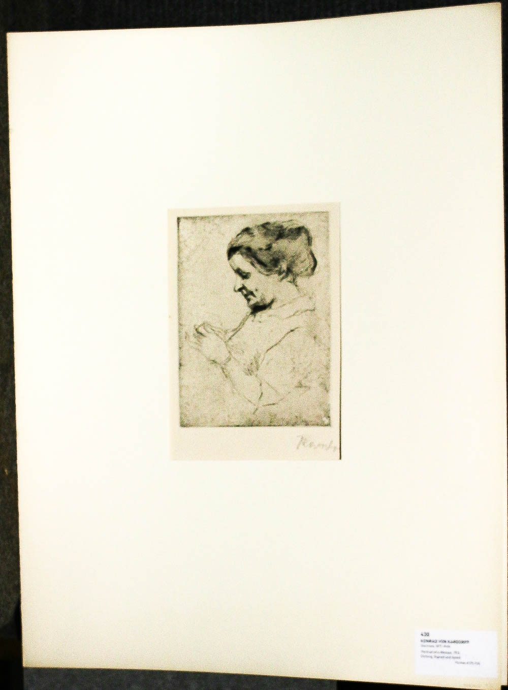 "Image for Etching Image Of A Woman Mounted In Folder 17.5 X 23"" Fine 1913 Konrad Von Kardorff"