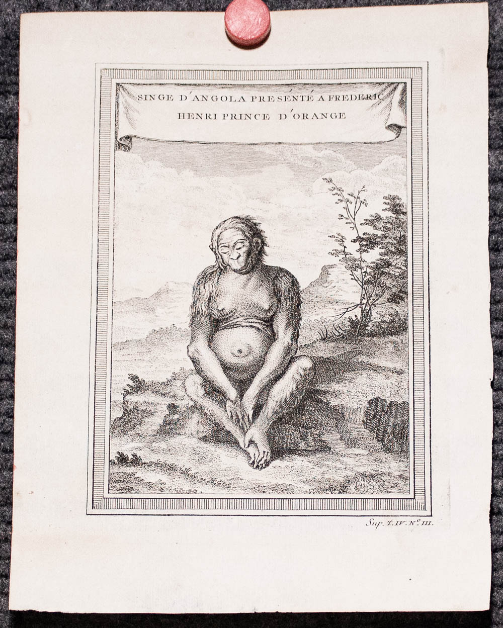"Image for Two Bellin 1746 two Prints From Histoire Generale Des Voyages, To Include Chimpaneze [sic], And Henri Prince D'orange, 8"" X 6""."