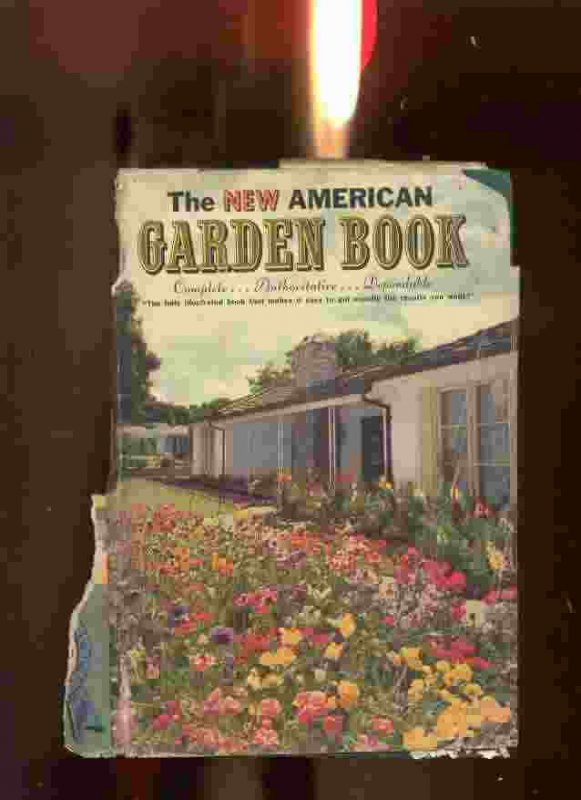 Image for THE NEW AMERICAN GARDEN BOOK