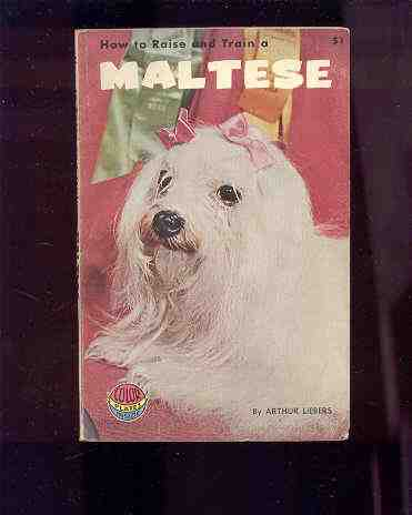 Image for HOW TO RAISE AND TRAIN A MALTESE